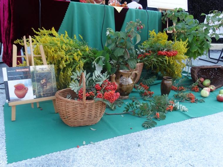 Narodowe Czytanie w bocheńskiej tężni solankowej zdjęcie numer 4